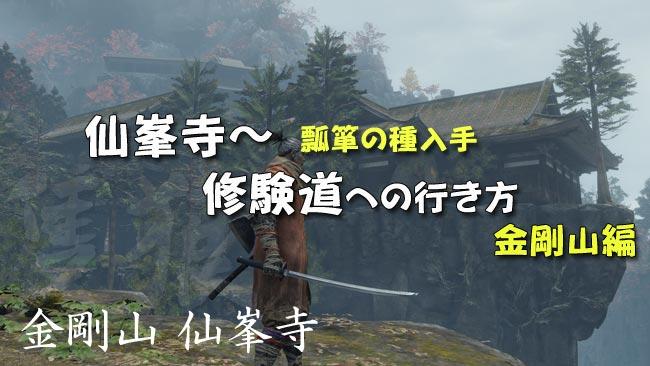 sekiro_story16