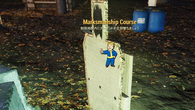 Fallout76_main14bacmarksma1