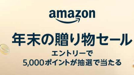 sale20201211-2