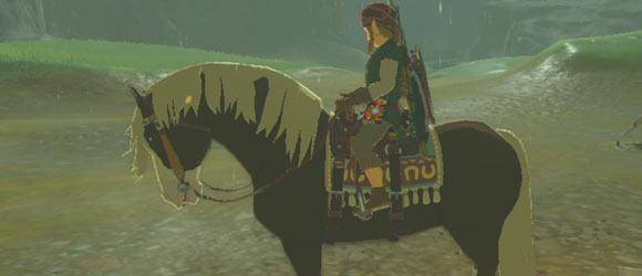 wildhorse0