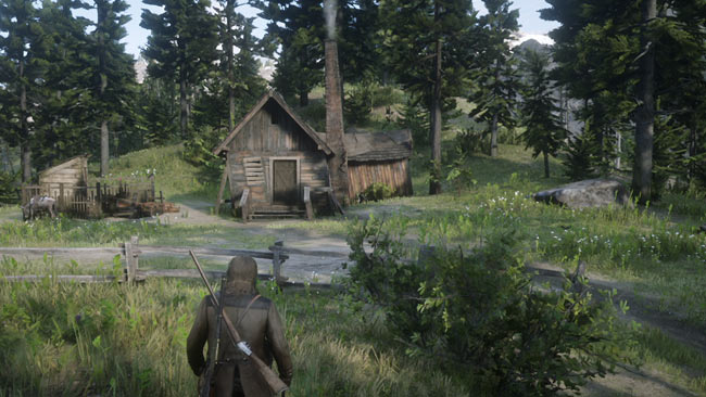 rdr2_strongweapo4map2