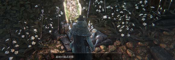 Bloodborne_seihai