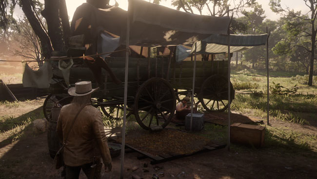 rdr2_chapter4_3nono1