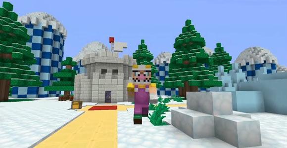 MinecraftNintendo03