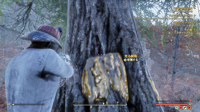 Fallout76_main8mayhem2