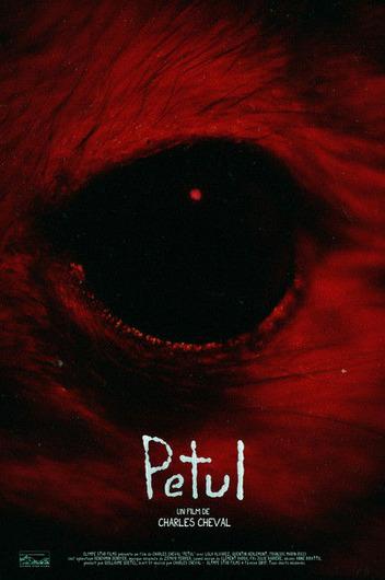 PETUL_Poster-thumb-430xauto-68029