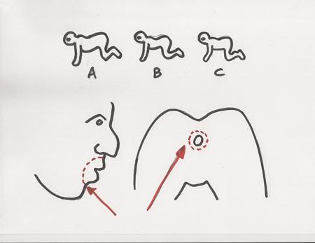 sketch-7-THC-sm