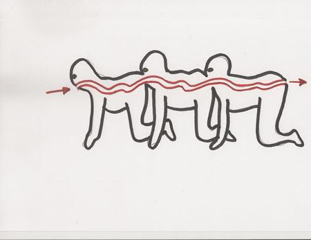 sketch-4-THC-sm