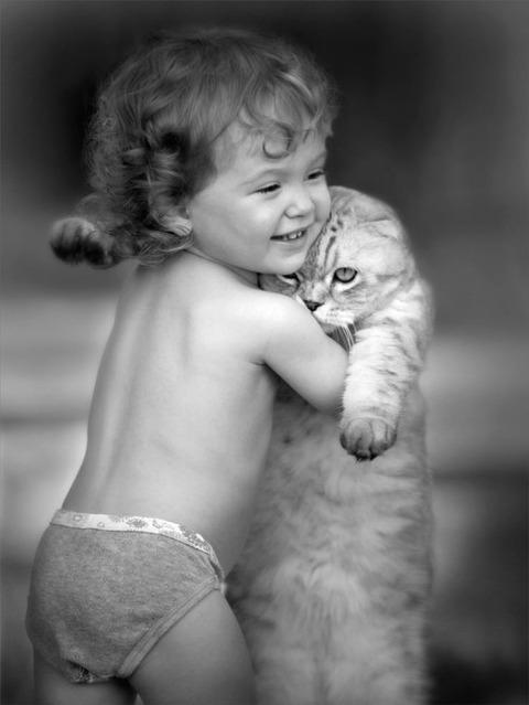 可愛い猫画像ブログ(1287)