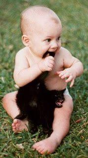 可愛い猫画像ブログ(791)