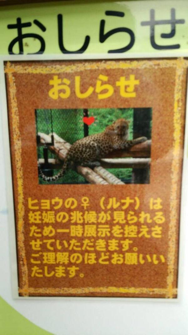 福岡市動物園3