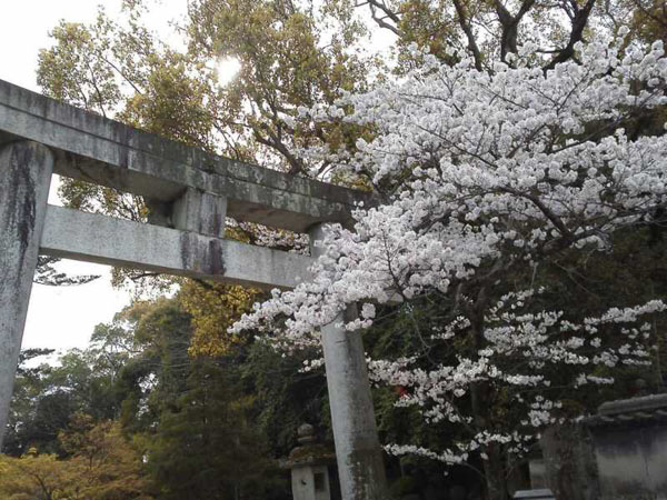 長崎への旅2