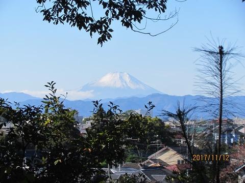 008、富士山冠雪 (2)