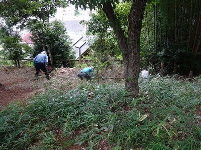 郷土博物館横の下草刈り