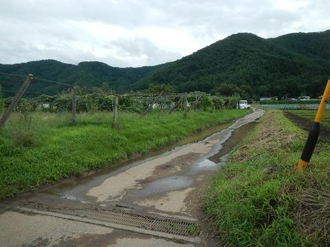 ライダー野営場 (2)