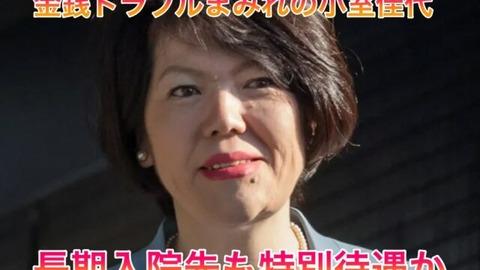 小室圭 暗殺 (4)