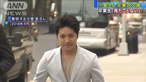 小室圭が逮捕された理由 (2)