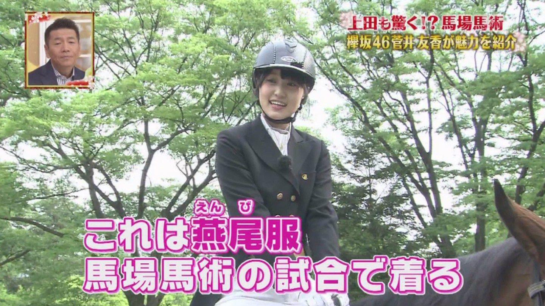 菅井友香の親の職業は公表されていないが、「山の手」に実家があるという事はそれなりの地位の人しか住めず、ネット上では、医師、政治家、会社経営者など社会的地位の