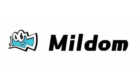 ミルダムの公認切り (3)