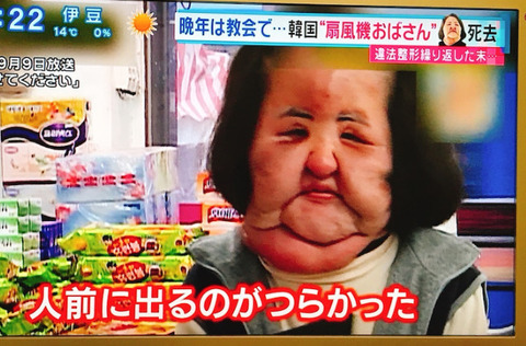 扇風機おばさん現在 (6)