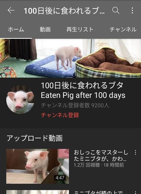 100日後に食われる豚丸焼き (2)