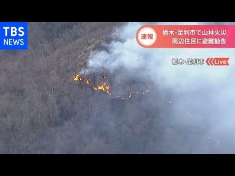 足利山火事原因たき火 (2)