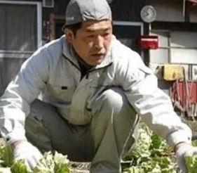 一人農業 渡辺 台風被害 (3)