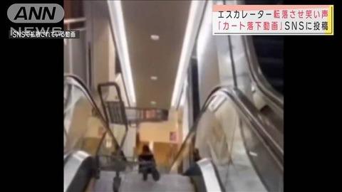 イオンカート落下犯人特定 (1)