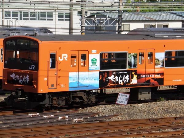 DSCF9868