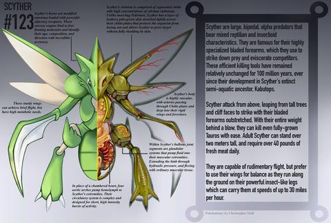 scyther_anatomy__pokedex_entry_by_christopher_stoll-daj49df