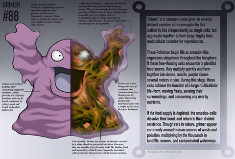 grimer_anatomy__pokedex_entry_by_christopher_stoll-dalf7k3