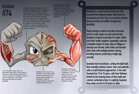 geodude_anatomy__pokedex_entry_by_christopher_stoll-dalq77n