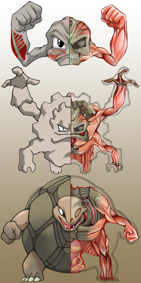 pokenatomy__geodude_evolution_by_christopher_stoll-dalq9sn