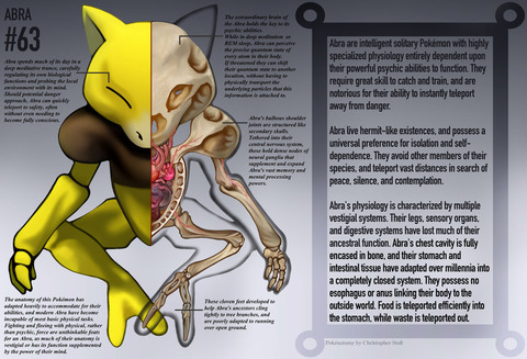 abra_anatomy__pokedex_entry_by_christopher_stoll-dahxtya