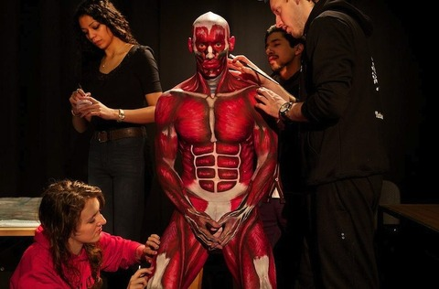 anatomicalman8