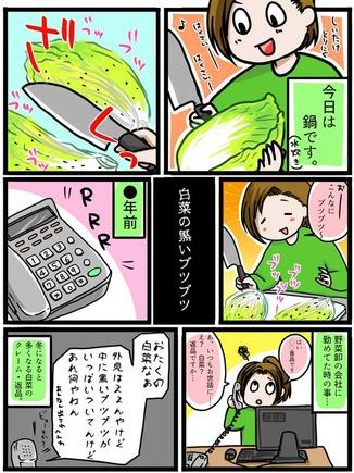 hakusai-butsubutsu2