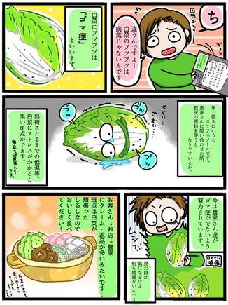 hakusai-butsubutsu3