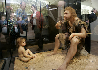 neanderthal2