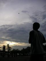 夕焼けフライト(縦)