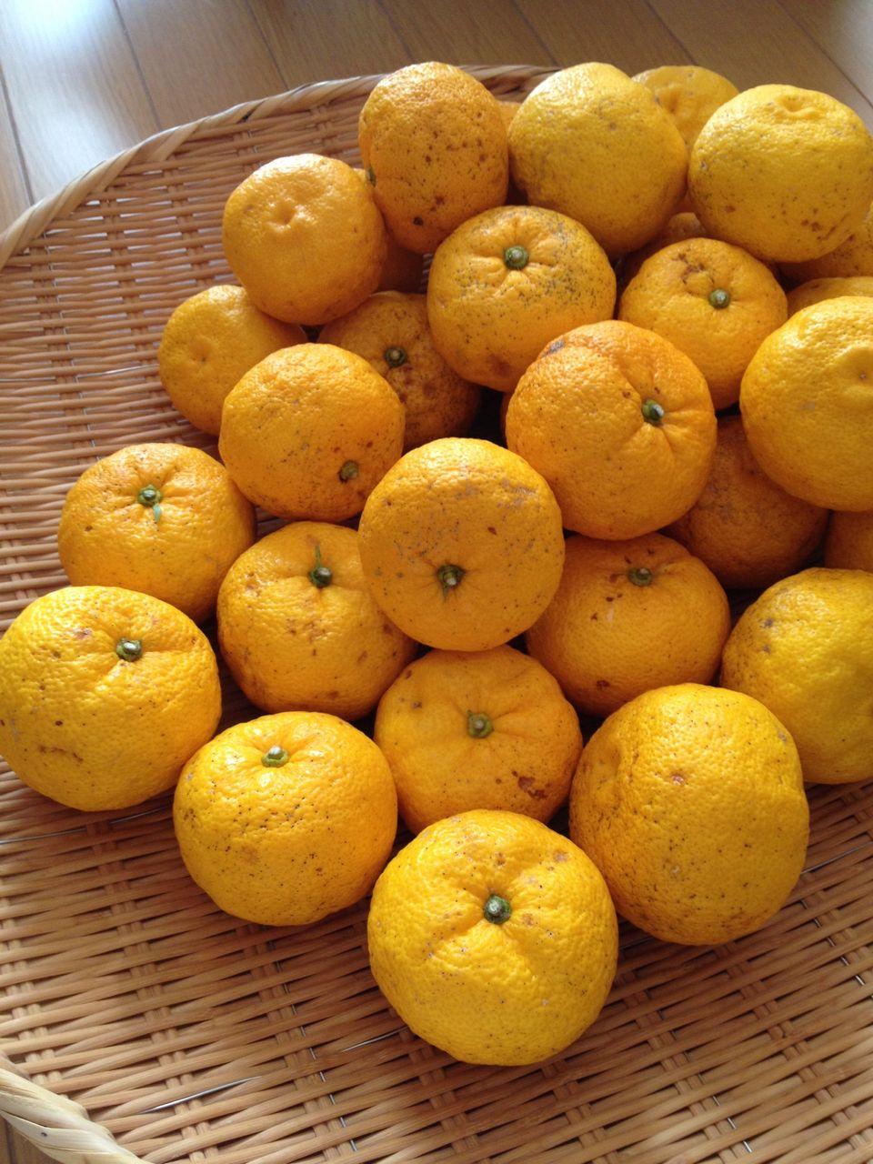 ジャム 柚子