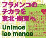 ulm-banner