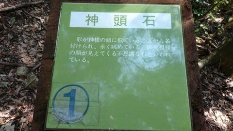 06-DSC_0876