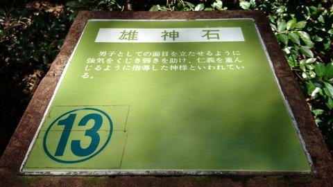 16-DSC_0887