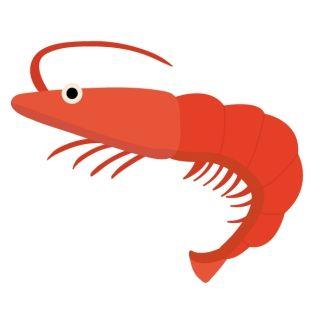 蟹や海老がアレルギーの妹に、義理実家の奴らが無理矢理食べさせやがった