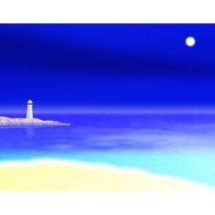 就活で大変な時に「沖縄に行かない?」と母が電話で聞いてきた。それが母の最初で最後のワガママだった
