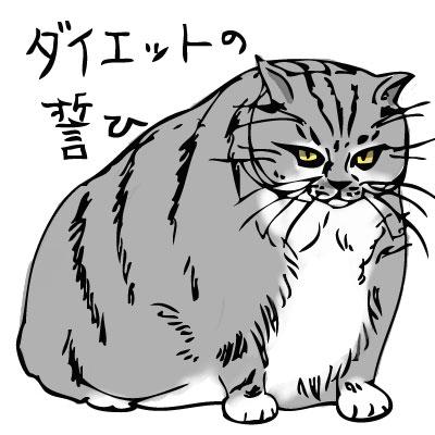 【ダイエット】サウナって痩せるの?