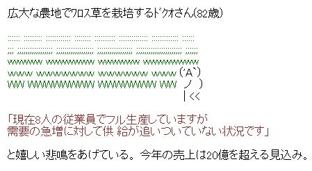 ワロス草の栽培 AA(アスキーアート)