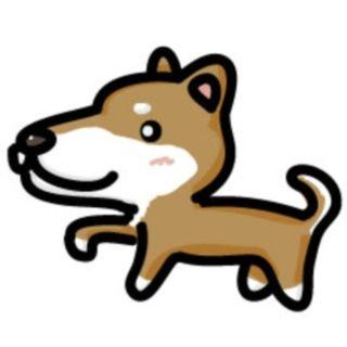 私は愛犬が「勝った」とドヤ顔していたのを見逃さなかった。