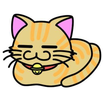 民宿に止まった時に猫に懐かれて、女将さんやスタッフなどと話し合い家で引き取る事になった