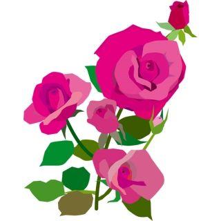 『うちの玄関に置いたほうがバラが喜ぶ』と鉢ごと持ち去ろうとするセコママ
